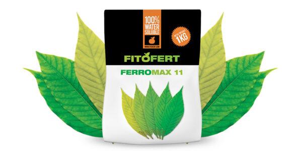 FERRO-MAX-11