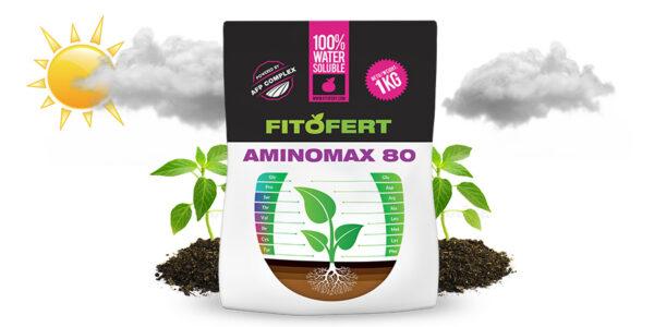FITOFERT-AMINOMAX-80