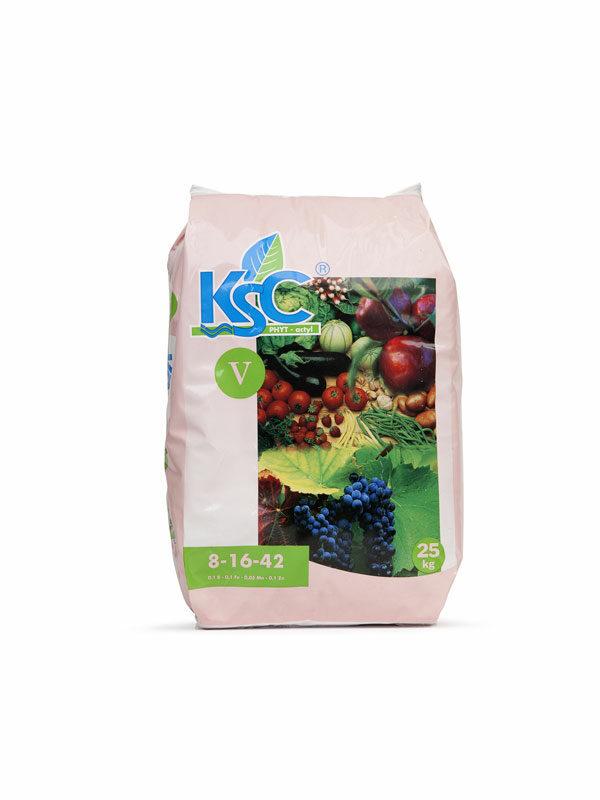 kcs5 (1)