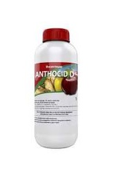 ANTHOCID D - Insekticid