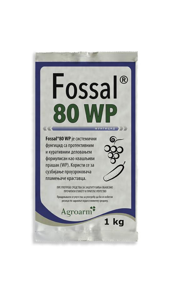 FOSSAL_1KG