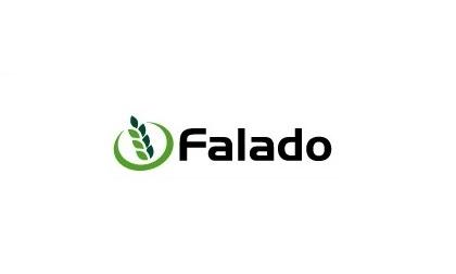 FALADO1234