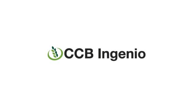 INGENIO1234