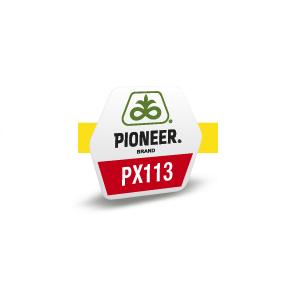 PX1131