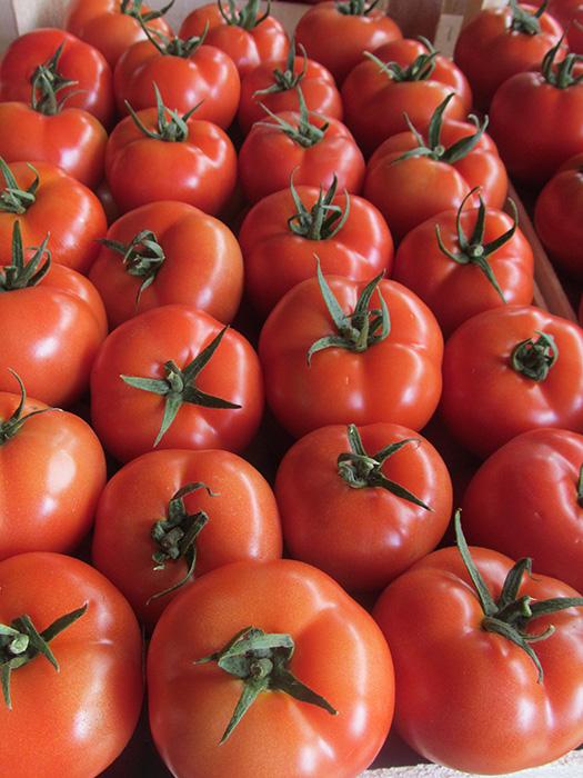 Alfred paradajz 3