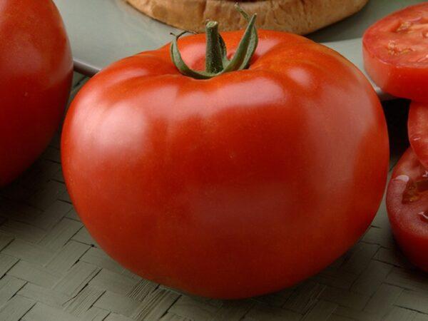 Big_Beef paradajz 1