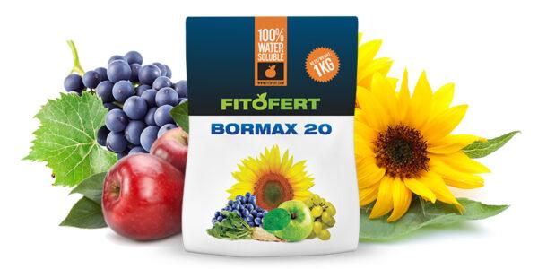 BORMAX-20