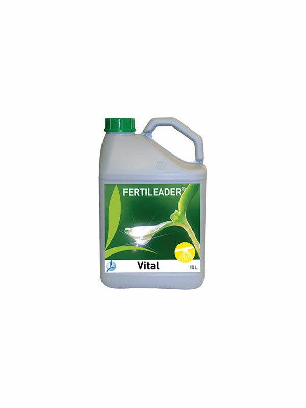 FertileaderVital