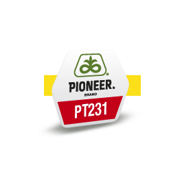 PT2311